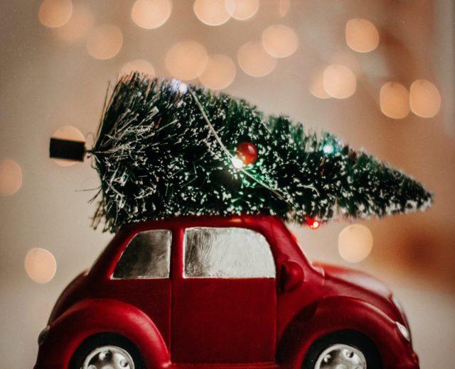 Où partir pour les fêtes de fin d'année ?