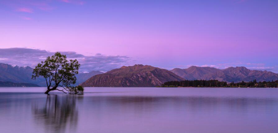 Destination tourisme : découverte de la Nouvelle-Zélande
